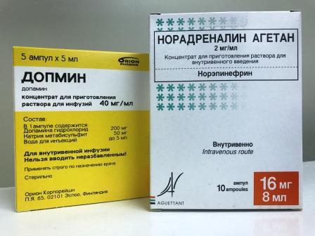 dopamin och noradrenalin
